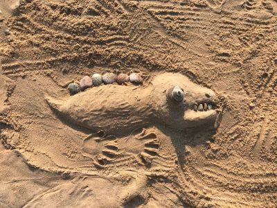 Lizard Sand Creation